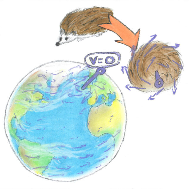 Coloured drawing of planet Earth with an arrow pointing to zero wind speed. There is a hedgehog drawn spinning into a ball above the planet.